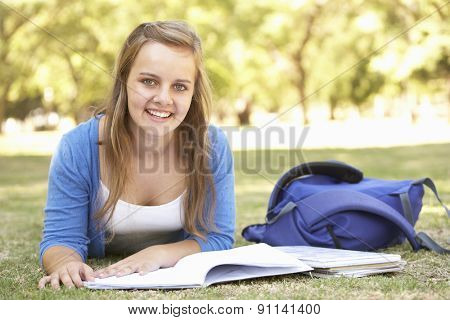 Teenage Girl Studying In Park