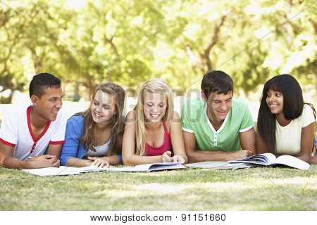 Group Of Teenage Friends Studying In Park