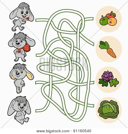 Maze Game For Children (rabbits)
