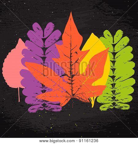 Grunge Leaves Set