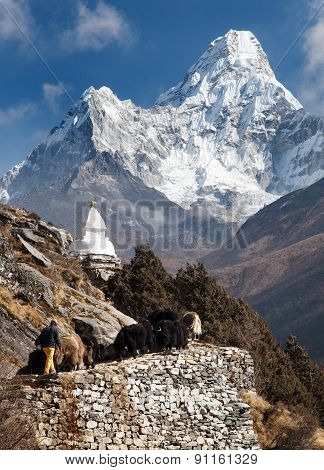 View Of Ama Dablam With Stupa And Caravan Of Yaks