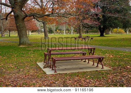 Bench and  park in the autumn