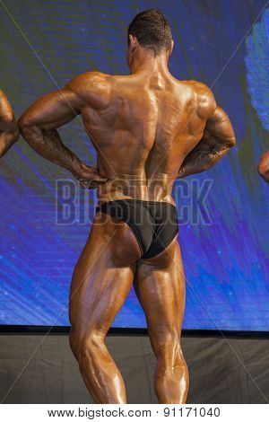 Back View Of Professional Male Caucasian Bodybuilder Performing On Stage.