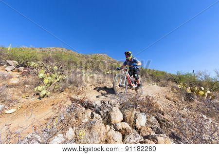 Downhill Bike Rider