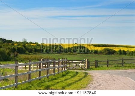 Landscape Image Of Fields With Blue Sky And Clouds