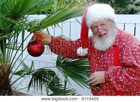 Santa Claus Decorating a Palm Tree