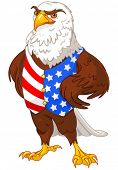 pic of vest  - Illustration of proud American eagle wearing American flag vest - JPG