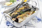 picture of bass fish  - Sea Bass in Casserole - JPG