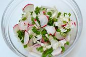 picture of radish  - Salad with radish onion and cabbage on the table - JPG