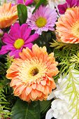 image of gerbera daisy  - Gerbera and Daisy a bouquet of flowers - JPG