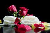 foto of poetry  - Love poetry concept - JPG