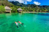 foto of tropical island  - Young couple snorkeling over reef next to resort on a tropical island with over - JPG