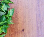 stock photo of nettle  - branches of nettle on a wooden background - JPG