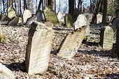 foto of cemetery  - Jewish cemetery - JPG