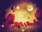 stock photo of night-blooming  - Dream fairy in fantasy land with bright red tulips at night time. ** Note: Visible grain at 100%, best at smaller sizes - JPG