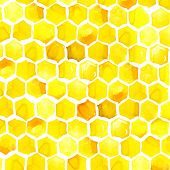picture of honeycomb  - Honey - JPG