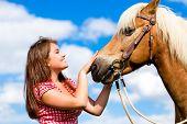 stock photo of pony  - Woman petting horse on pony farm - JPG