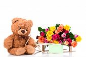 pic of bunch roses  - Bunch of roses and a teddy bear on white background - JPG