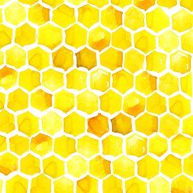 image of honeycomb  - Honey - JPG