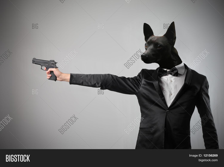Elegant Man Dog Head Pointing Gun Image & Photo | Bigstock