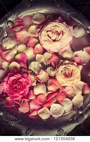 Pink and white rose petals in silver bowl with water, close up