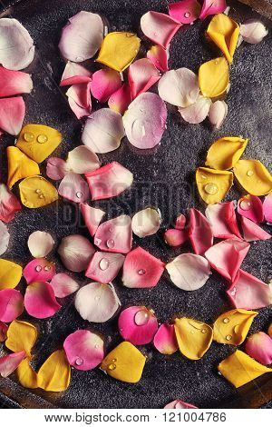 Pink and yellow rose petals in silver bowl with water, close up
