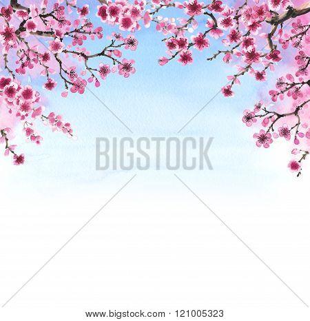 hand-drawn branch of sakura