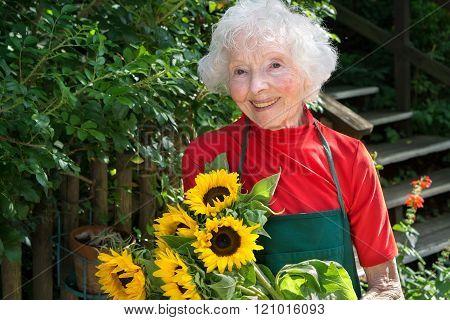 Smiling Senior Lady Gardening In Her Yard.