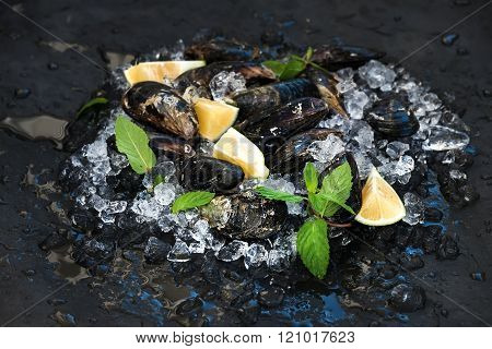 Fresh uncooked mussels with lemon, herbs and spices on chipped ice over dark slate stone backdrop, selective focus