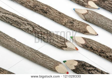 Sharpened Pencil Crayons Set In Rough Textured Bark