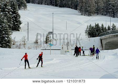 Celerina Cross Country Skiers