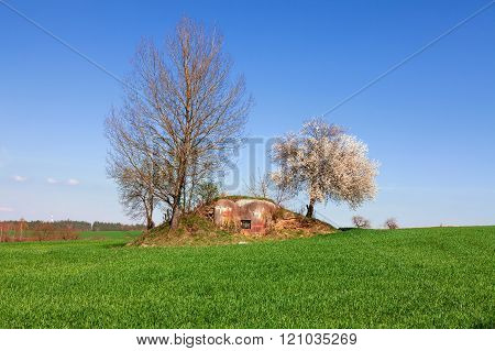 Old military bunker in green field