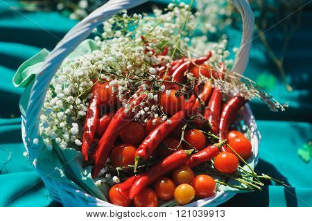 Basket With Small Tomatoes And Peppers