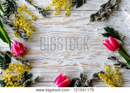 The Tulip, A Mimosa, Willow Flower Spring Border Isolated Over White Background.