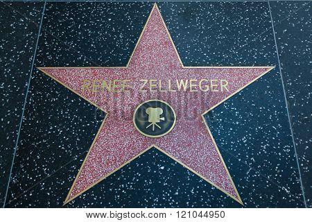 Renee Zellweger Hollywood Star