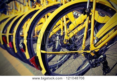 Bicycles In The Store Of The Urban Bike-sharing