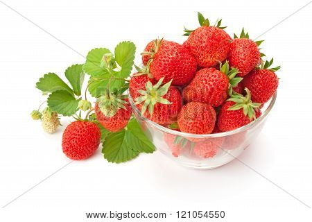 Sweet Fragrant Strawberries In A Glass Vase