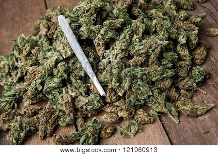 Marijuana Buds With Joint