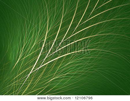 grass/fescue background