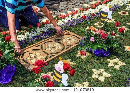 Decorating Pine Needle Lent Carpet, Antigua, Guatemala