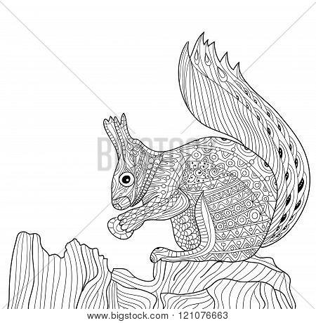 Zenart - zentangle squirrel. Coloring book for adults