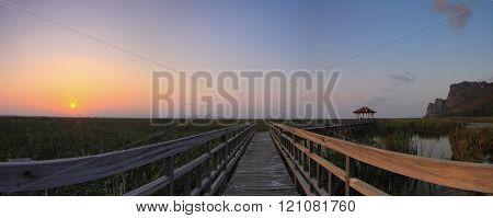 panorama of wood walkway