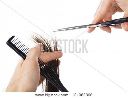 Hairdresser's hands with scissors cutting dark brown strand of hair, isolated on white