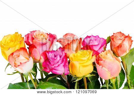 Beautiful Bouquet Colorful Rose Flowers With Dew Is Isolated On White Background, Close Up