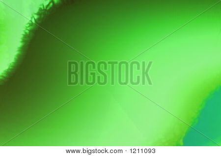 Abstract Composition, Leaf Of Green Plant