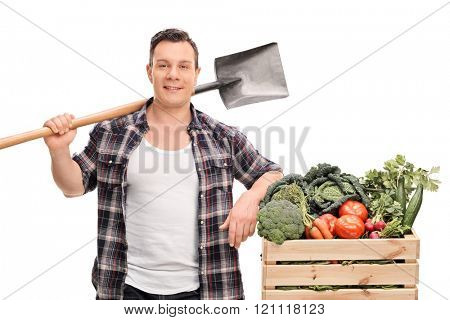 Young male farmer holding a shovel and standing next to a crate with vegetables isolated on white background