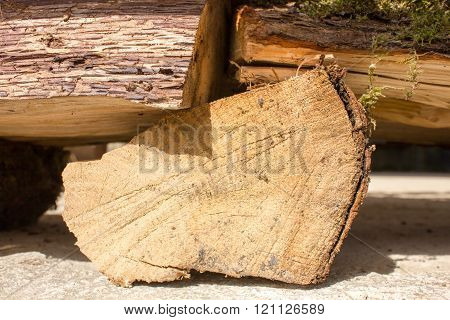 Wooden Logs For Kindling Fire