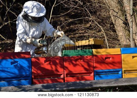 Beekeeper calms bees with Smoker - perspective