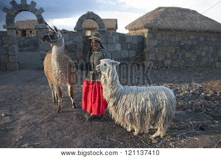 CUZCO, PERU - NOVEMBRE  2008: A unidentified woman with Alpaca pose for the camera  in Cuzco, Peru.