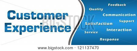 Customer Experience Wordcloud Blue Horizontal